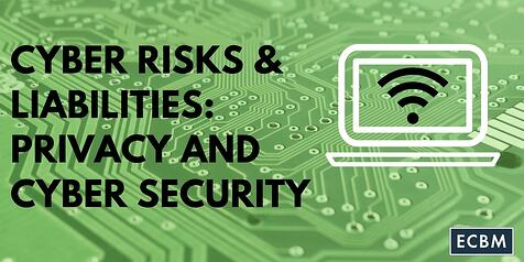 Cyber_Risks__Liabilities-_Privacy_and_Cyber_Security_TWI_MAR14.jpg