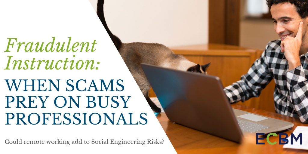 fraudulent instruction when scams prey on busy professionals man using laptop with cat on table